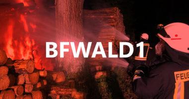 Einsatz, großer Holzstapel brennt im Wald am 05.06.2021